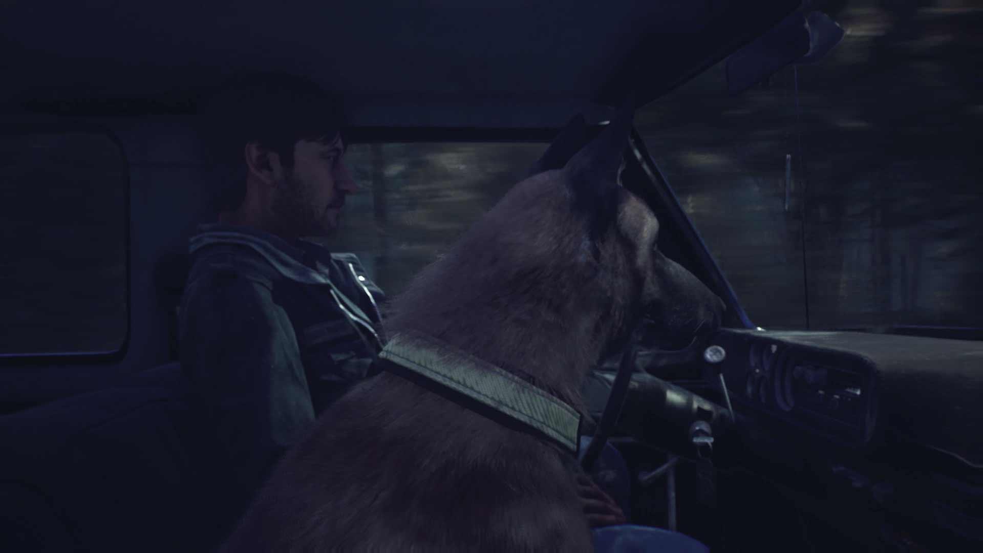 Сверхъестественные злодеи бродят по лесу, и они, кажется, охотятся на Эллиса и Bullet.